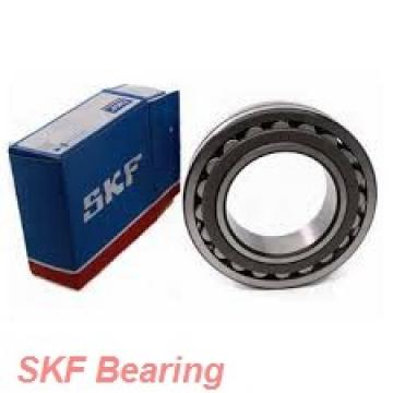 SKF SI8E plain bearings